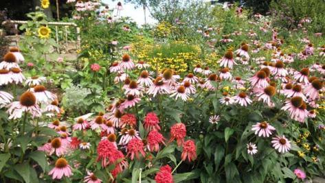 Dianes-Artsy-Flowers