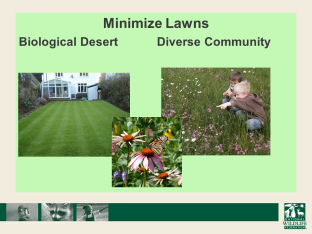 minimize lawns