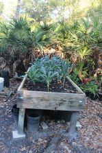 High Raised Bed
