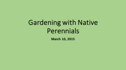 Gardening with Native Perennials