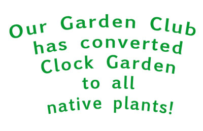 Native Plant Bed in the Weaverville Clock Garden