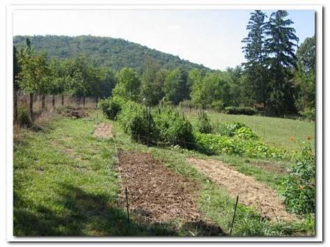 lengnick grow biointensive garden 2