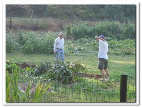 lengnick grow biointensive garden 3